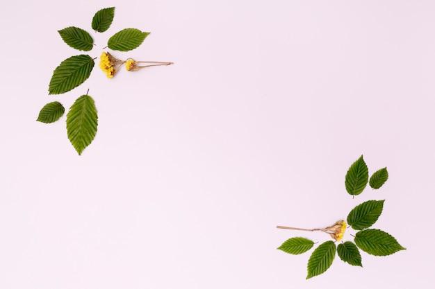 Diseño de follaje con flores y hojas.