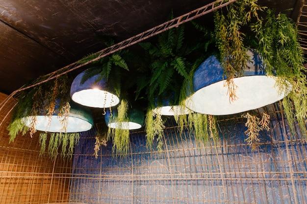 Diseño interior con lámpara y planta, hierba.