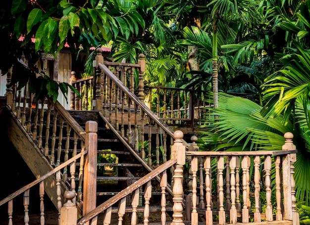 Diseño de paisaje de lujo del jardín tropical.