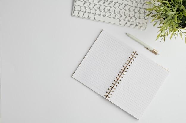 Diseño plano con bolígrafo, teclado de computadora, cuaderno abierto con páginas en blanco y planta doméstica verde en maceta en el escritorio