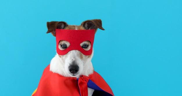 Disfraz de superhéroe russell perro