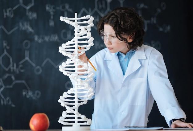 Disfrutando de la primera lección de genómica. curioso lindo niño talentoso de pie en el laboratorio y explorando el modelo de código genético mientras trabaja en el proyecto de genómica