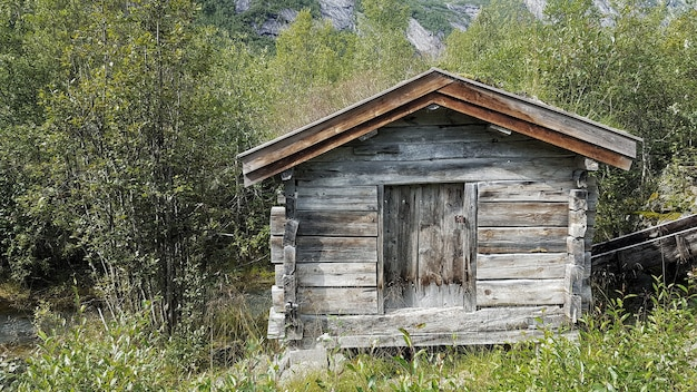 Disparo de gran angular de una pequeña casa de madera rodeada de árboles