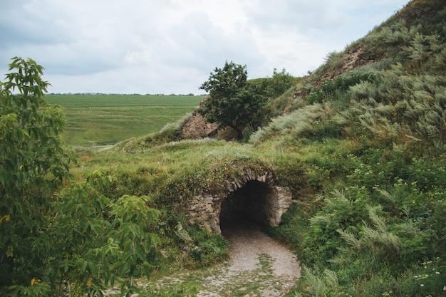 Disparo de gran angular de un túnel rodeado de césped y árboles