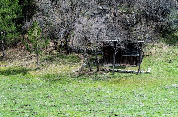 Disparo horizontal de hallazgos arqueológicos hititas de anatolia