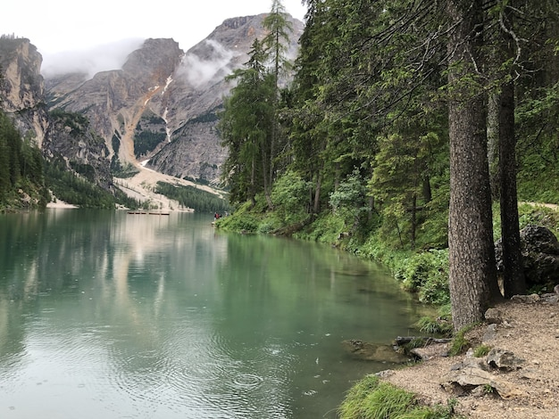 Disparo mágico de las montañas dolomitas, el parque nacional de fanes-sennes-prags, italia durante el verano
