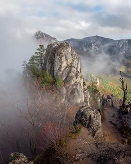 Disparo vertical de los acantilados rocosos rodeados de árboles capturados en un día brumoso