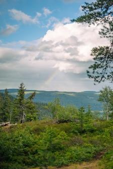 Disparo vertical de bosque, colinas y un arco iris en un día nublado