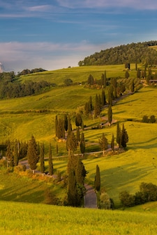 Disparo vertical de campos verdes rodeados de colinas en el campo