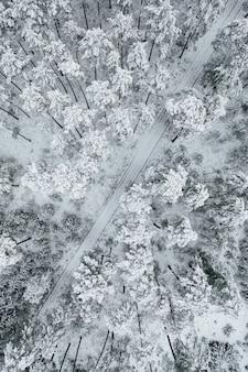 Disparo vertical de una carretera rodeada de hermosos bosques cubiertos de nieve.