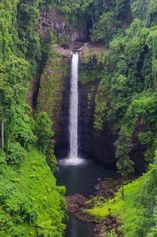 Disparo vertical de la cascada sopo'aga rodeada de vegetación en la isla de upolu, samoa