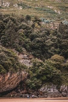 Disparo vertical de una colina alta cubierta de árboles y plantas