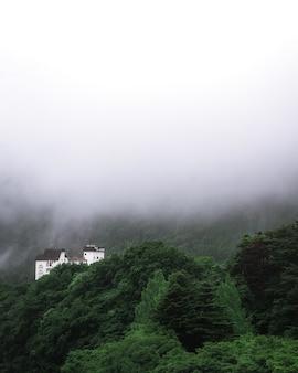 Disparo vertical de un edificio antiguo en una montaña cubierta por árboles en un día brumoso