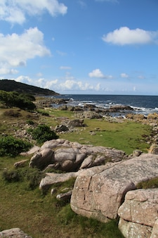 Disparo vertical de un hermoso paisaje costero con grandes rocas en hammer odde, bornholm, dinamarca