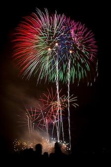 Disparo vertical de hermosos coloridos fuegos artificiales bajo el oscuro cielo nocturno