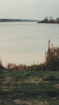 Disparo vertical de un lago y pasto verde