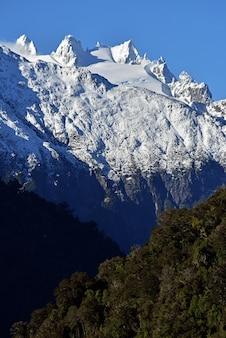 Disparo vertical de una montaña nevada y un bosque