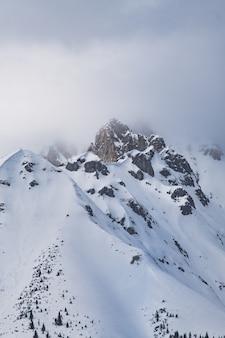 Disparo vertical de las montañas rocosas cubiertas de nieve