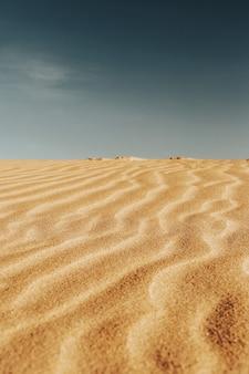 Disparo vertical de los patrones en las arenas del desierto