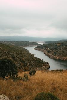 Disparo vertical de un tranquilo lago rodeado de árboles bajo un cielo nublado