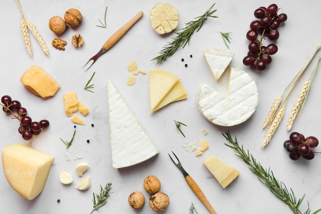 Disposición de diferentes tipos de queso sobre fondo blanco.