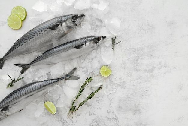 Disposición de mariscos saludables.