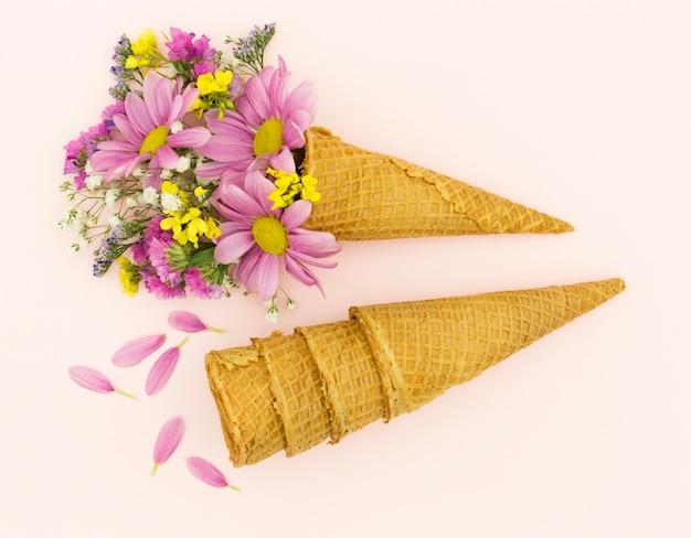 Disposición plana con margaritas rosas y conos.