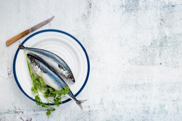 Disposición plana con pescado cocido y fondo de estuco.