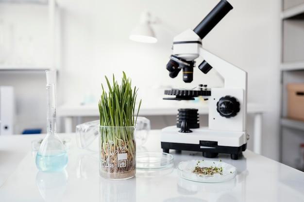 Disposición de plantas y microscopio