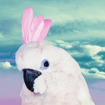 Divertido art collage parrot dreams unicorn. arte minimalista contemporáneo