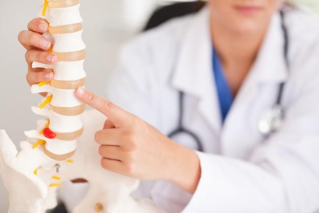 Doctor apuntando al hueso en la columna vertebral