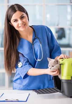Doctor de sexo femenino joven con un gato hermoso lindo.
