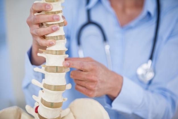 Doctora con modelo de columna vertebral