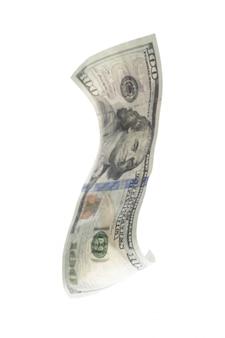 Dólar aislado en blanco