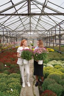 Dos adorables damas posando con racimos de crisantemos rosados en una hermosa casa verde en flor con techo de cristal.