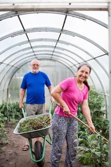 Dos ancianos en invernadero con accesorios de jardín.