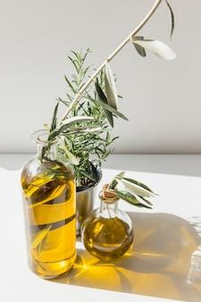Dos botellas transparentes de aceite de oliva con maceta de romero