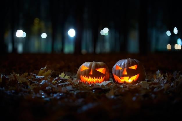 Dos brillantes calabazas de halloween en el parque por la noche