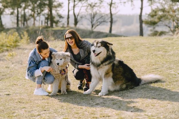 Dos chicas con estilo en un campo soleado con perros