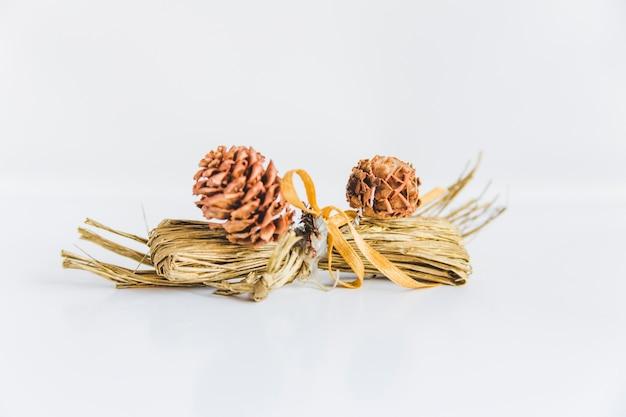 Dos conos de pino con heno paquete sobre fondo blanco