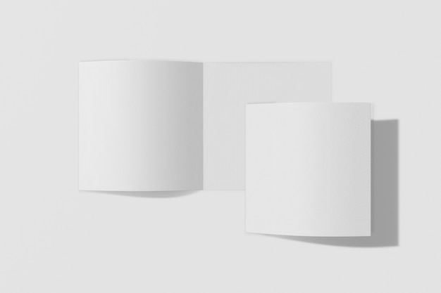 Dos folletos verticales aislados sobre fondo blanco.