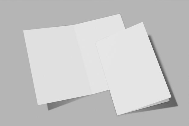 Dos folletos verticales aislados sobre fondo gris