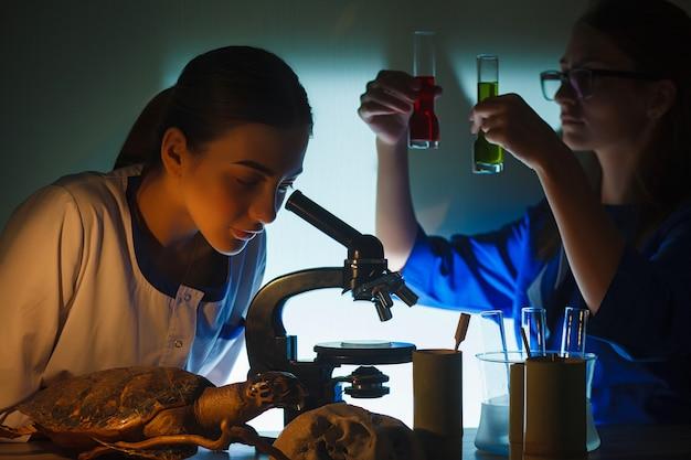 Dos hermosas colegialas haciendo experimento juntos en el laboratorio.