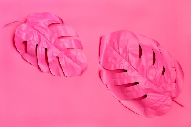 Dos hojas de palmera tropical rosa de monstera