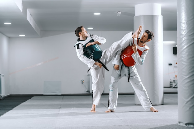 Dos hombres deportivos entrenando en tae kwon hacen accesorios descalzos.