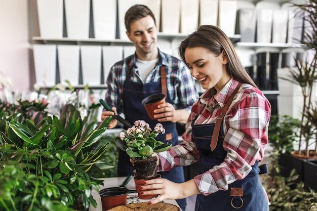 Dos jardinero en la tienda de plantas caseras verdes