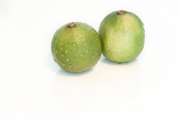 Dos limones verdes frescos con gotas de agua sobre un fondo blanco.
