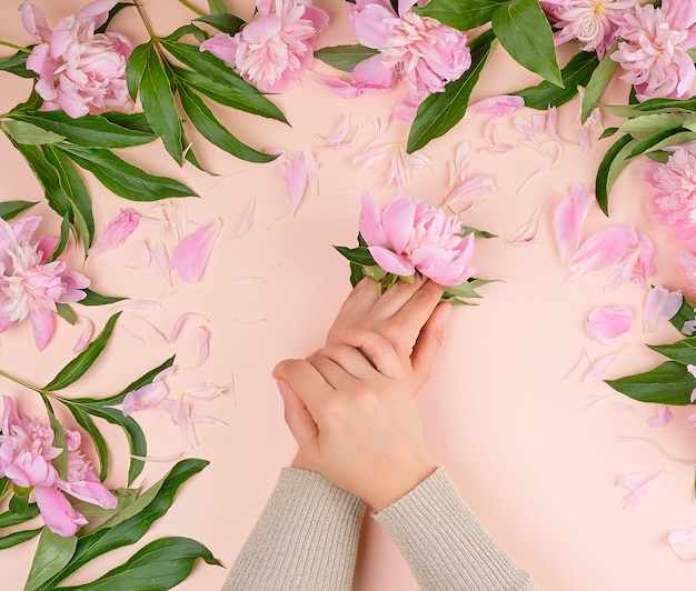 Dos manos femeninas y peonías rosas sobre un fondo beige, concepto de moda para el cuidado de la piel de las manos
