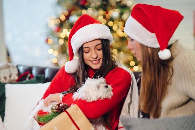 Dos mujeres con un perro pequeño están sentados en el sofá en navidad