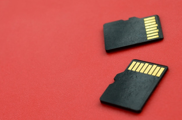 Dos pequeñas tarjetas de memoria micro sd se encuentran sobre un fondo rojo. un pequeño y compacto almacén de datos e información.
